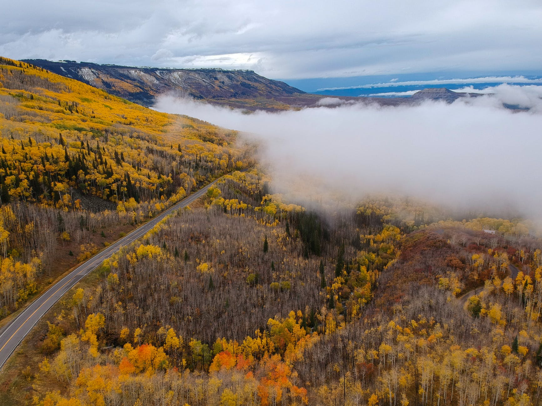 yellow and orange leafed trees above clouds